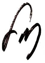 Todd's Signature