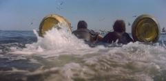 Jaws - photo paddle