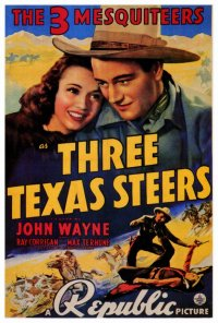 Three Texas Steers - poster